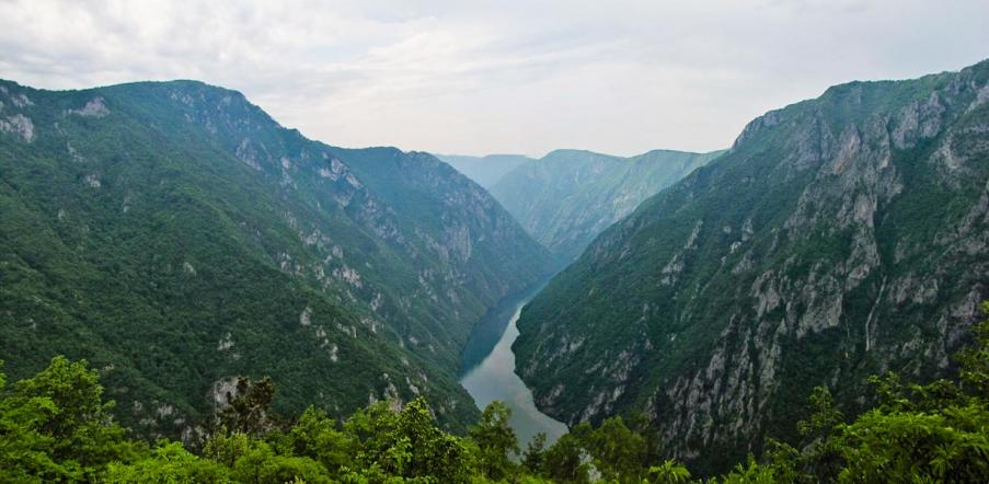 Veličanstveni kanjon Drine