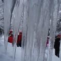 Okovani u ledenice