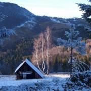 Zimski ambijent na tari