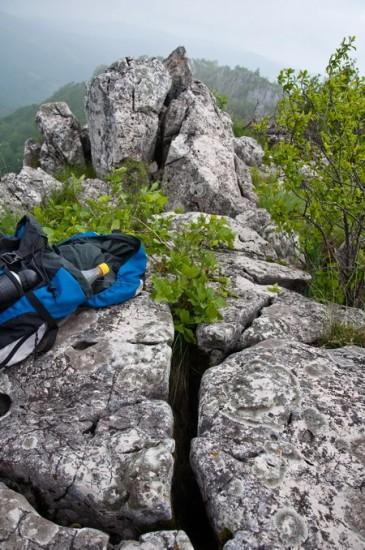 Širi plan stene i pukotine gde se nalazi geokeš