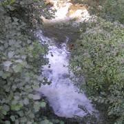 Ušće Savošnice u Studenicu