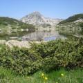 Zablje jezero