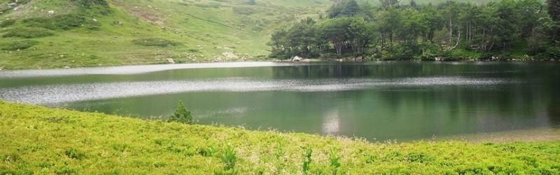 BJELASICA Jelovica – vrh Zekova glava – Jelovica (17 km)