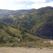 Selo Milići