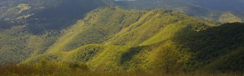 Pogled na planinu Kovac