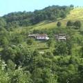 RidoviRazana